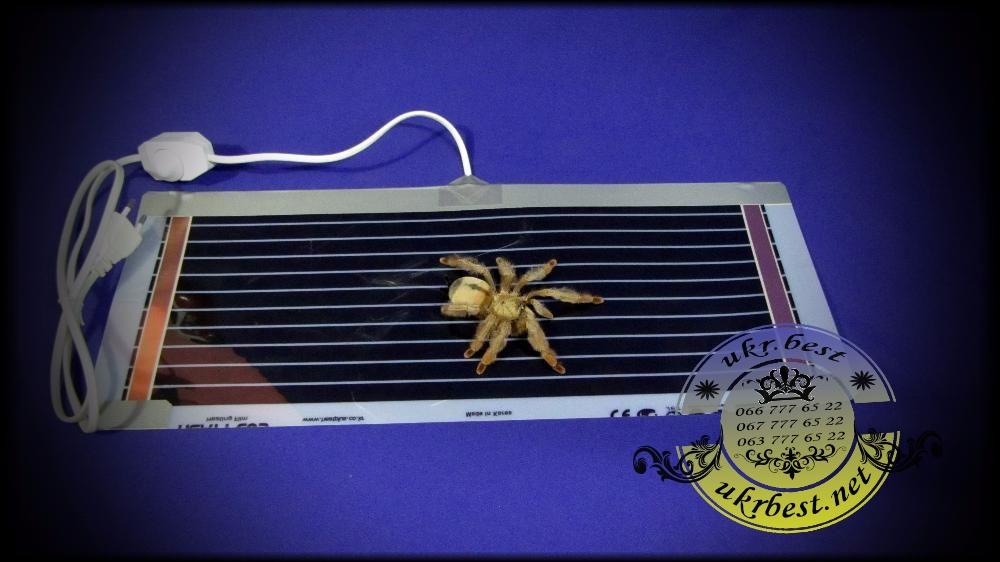 Обогреватель террариумный - термоковрик для паука.