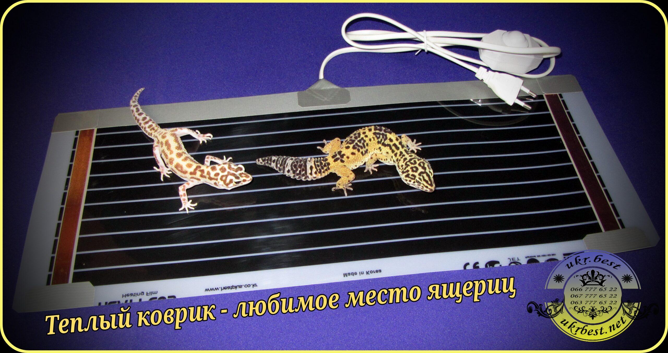Обогреватель для террариума ящера - Украина.